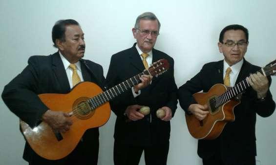 Trio bogota, serenatas de amor, serenatas de cumpleaños