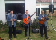 TRIO MUSICAL SERENATAS MOTIVOS TRES TRIO