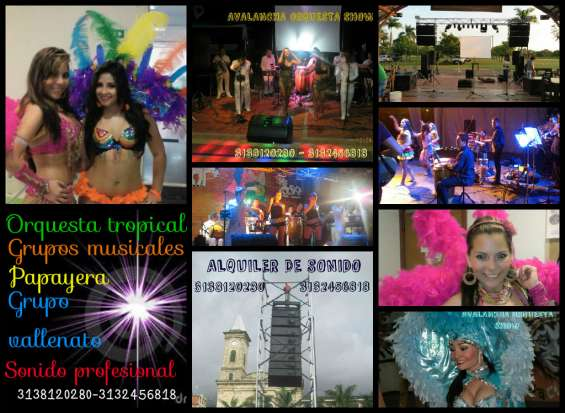 Papayeras grupos musicales en fusa 3138120280
