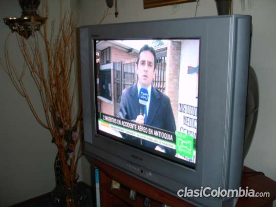Televisor a color, marca samsung tantus,